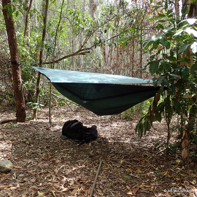 Base camp, hiking hammocks between trees