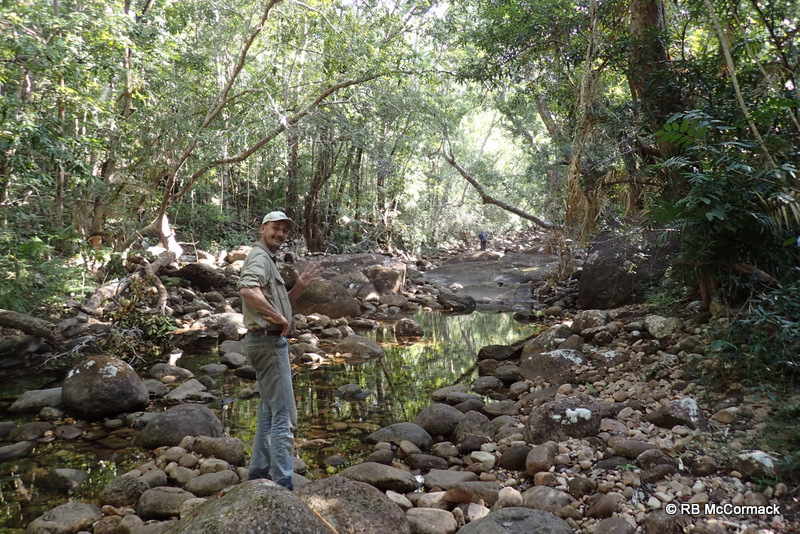 Paul foreground and Karl background surveying a freshwater stream of Hinchinbrook Island
