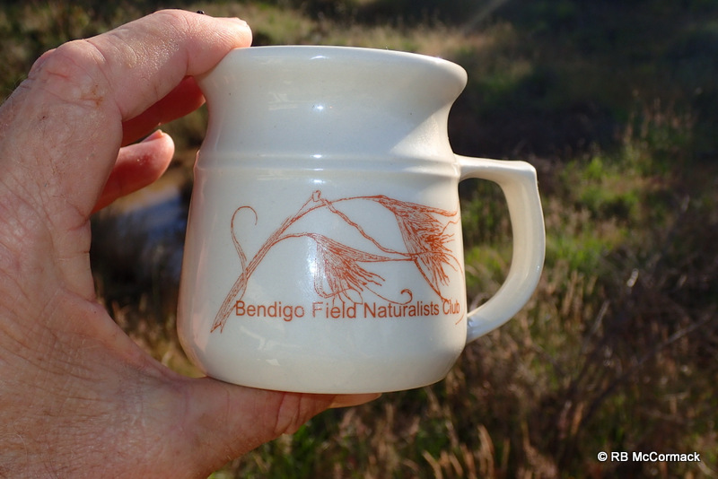 Bendigo Field Naturalist Club