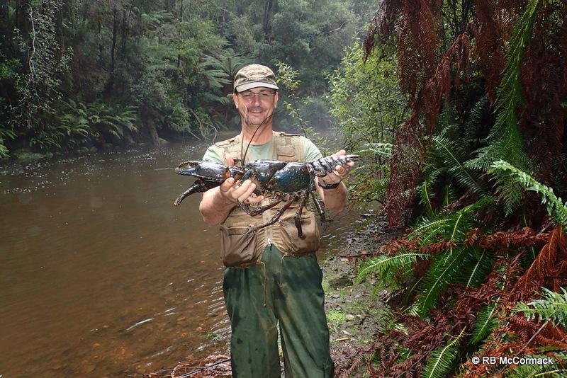 Paul Van der Werf with a 2.5 kg Astacopsis gouldi