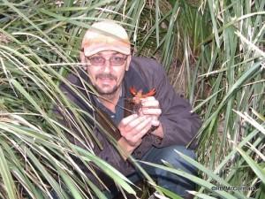 Paul Van der Werf with Euastacus pilosus