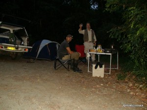 Paul and I camped that night in the forest so we could survey the streams at night to gather biological information. E. urospinosus became more active as the night deepened by E. hystricosus became less active.