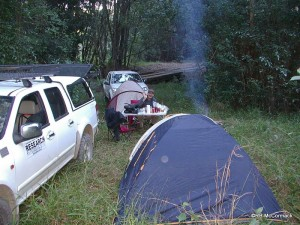 Paul and I spent the night in Tuckers Nob State Forest beside little Hydes Creek which was full of eels and gudgeons