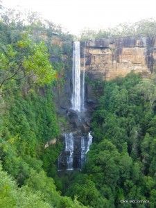 Fitzroy Falls plunging 80 m into the valley below