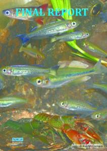 Aquatic Biodiversity Survey Coffs Harbour Region